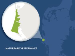 Naturpark Vesterhavet_udsnit_vk(1)